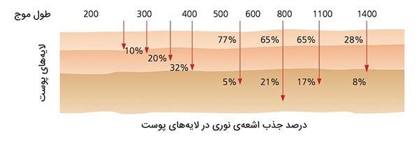 درصد جذب لایه های نوری در لایه های پوست